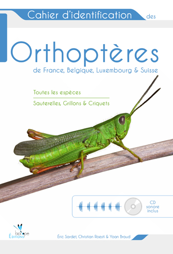Orthoptères
